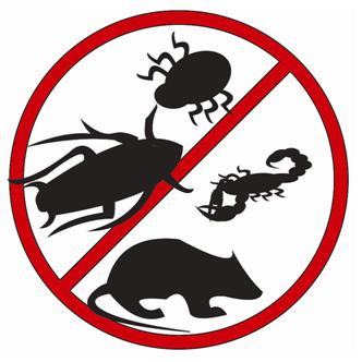 Como evitar pragas em lanchonetes e restaurantes