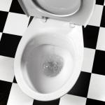 3 dicas para desentupir vaso sanitário sem sujeira